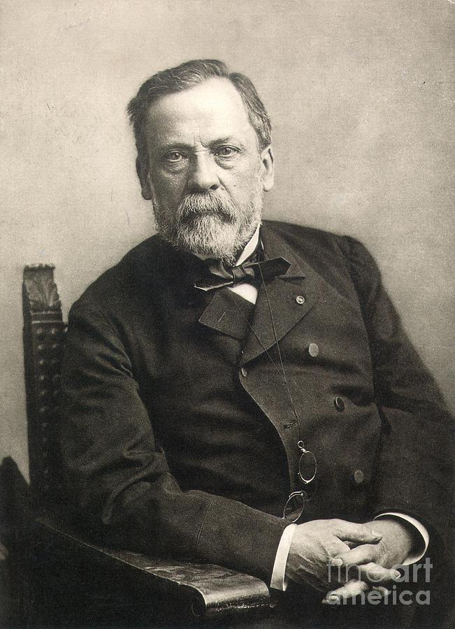 1889 Photograph - Louis Pasteur (1822-1895) by Granger