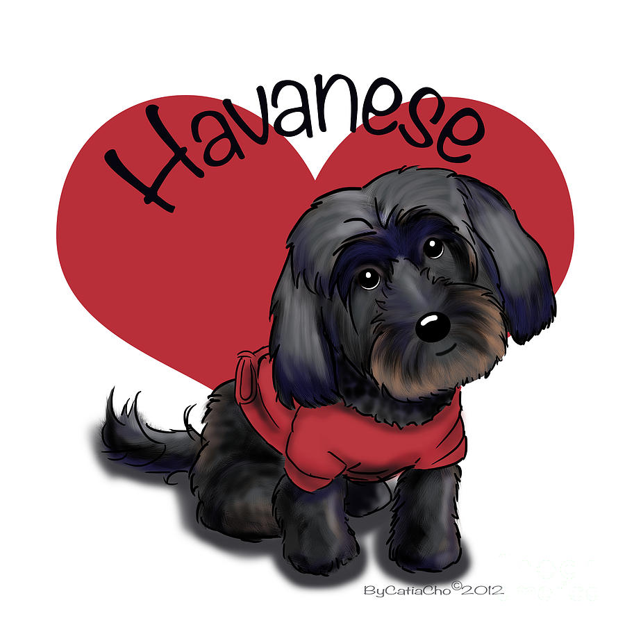 Lovable Mixed Media - Lovable Black Havanese by Catia Cho