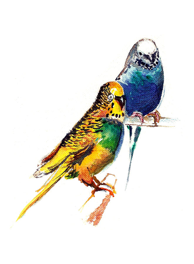 Nature Painting - Love Birds by Anil Nene