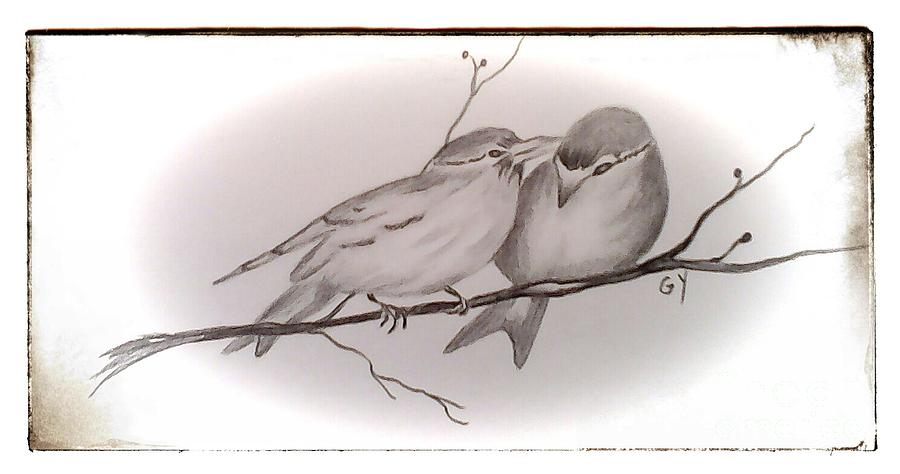 Birds Drawing - Love Birds by Ginny Youngblood