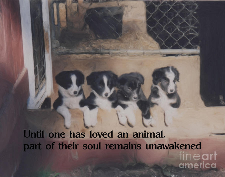 Inspirational Painting - Love For Animals by Smilin Eyes  Treasures