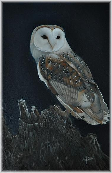 Owl Painting - Love In The Wood by Wilson  Lopez
