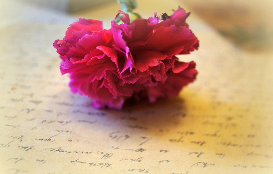 Love Letters Straight From The Heart Photograph