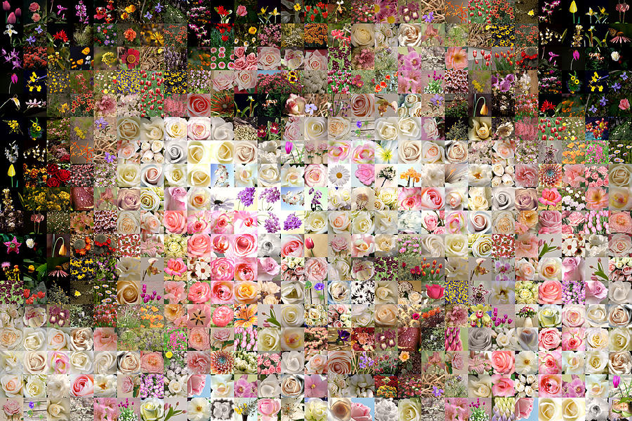 Mosaic Digital Art - Love Me With Flowers by Gilberto Viciedo