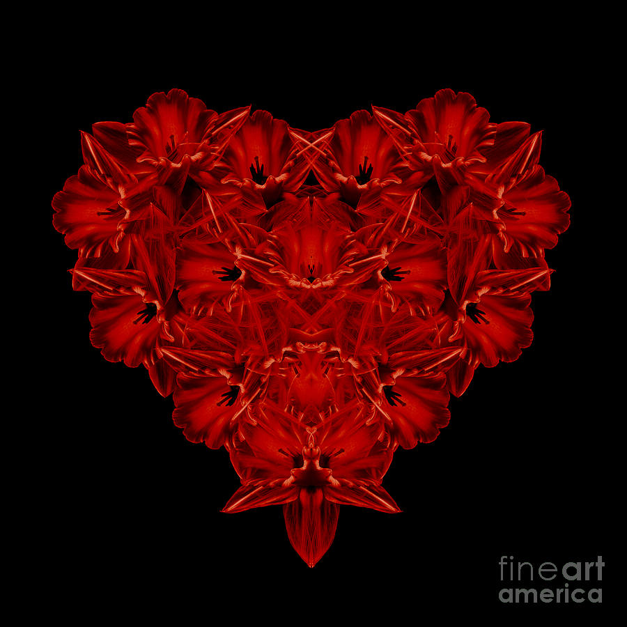 Heart Photograph - Love Red Floral Heart by Edward Fielding