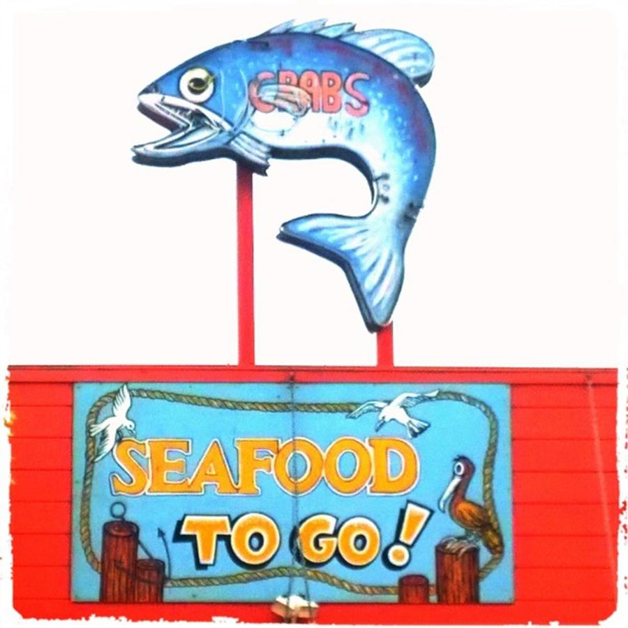 Fish Photograph - Love This #sign For An Old School by Shari Warren