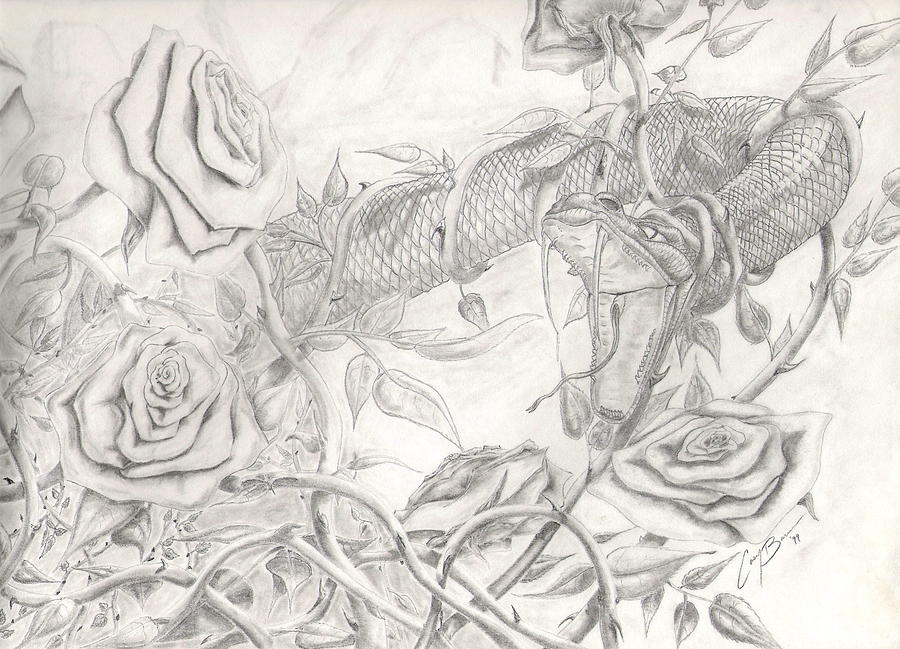 Snake Drawing - Love Triumphs by Casey Barnes
