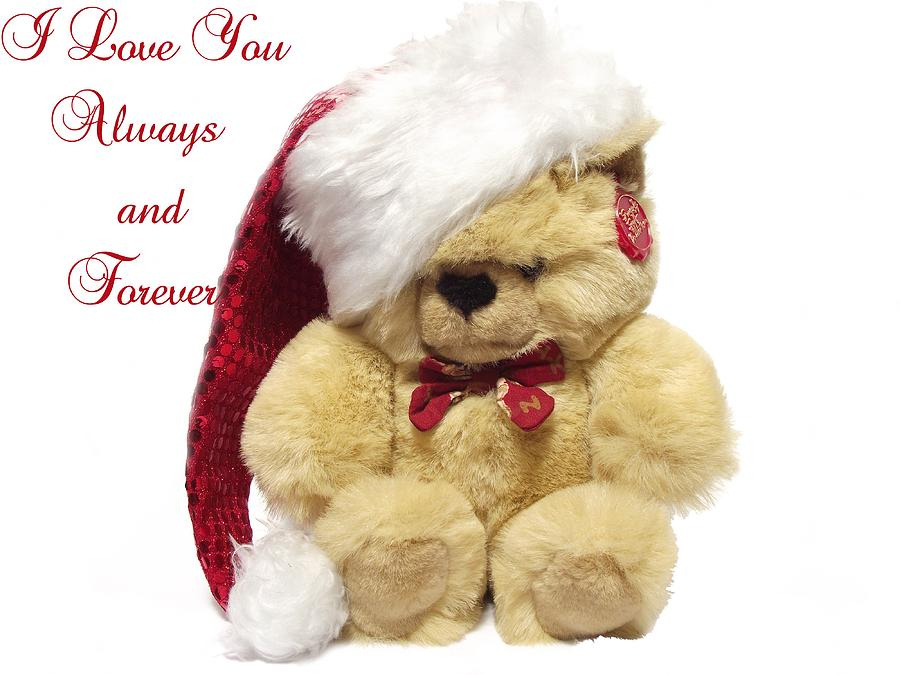 Love you christmas bear message photograph by dawn hay