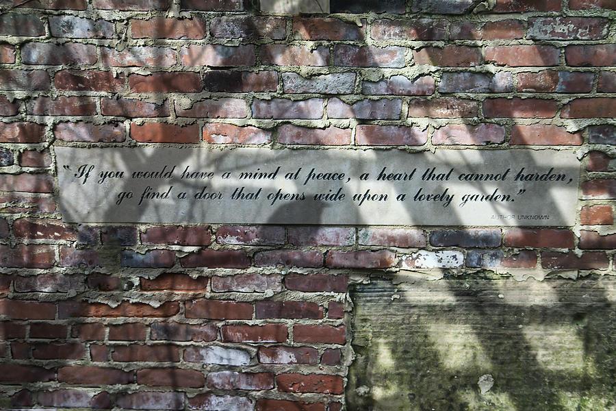 Wall Photograph - Lovely Garden Wall by Tom Mc Nemar