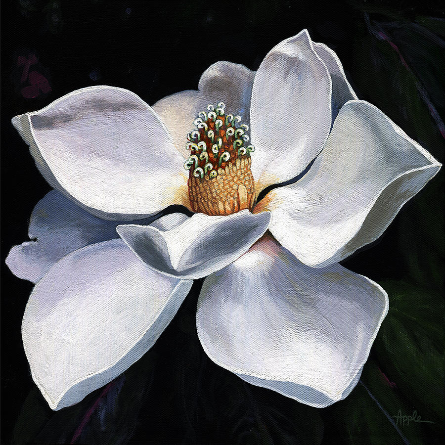 Lovely in white painting magnolia flower painting by linda apple magnolia painting lovely in white painting magnolia flower by linda apple mightylinksfo