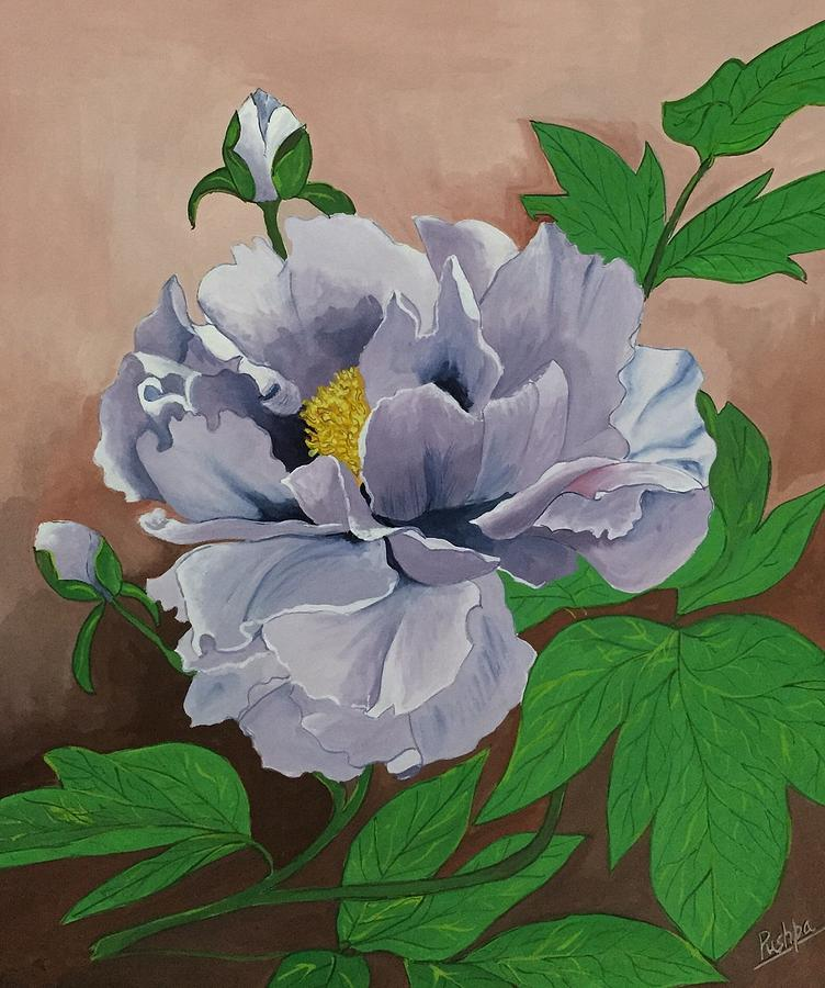 Flower Drawing - Lovely Peony Flower With Buds by Pushpa Sharma