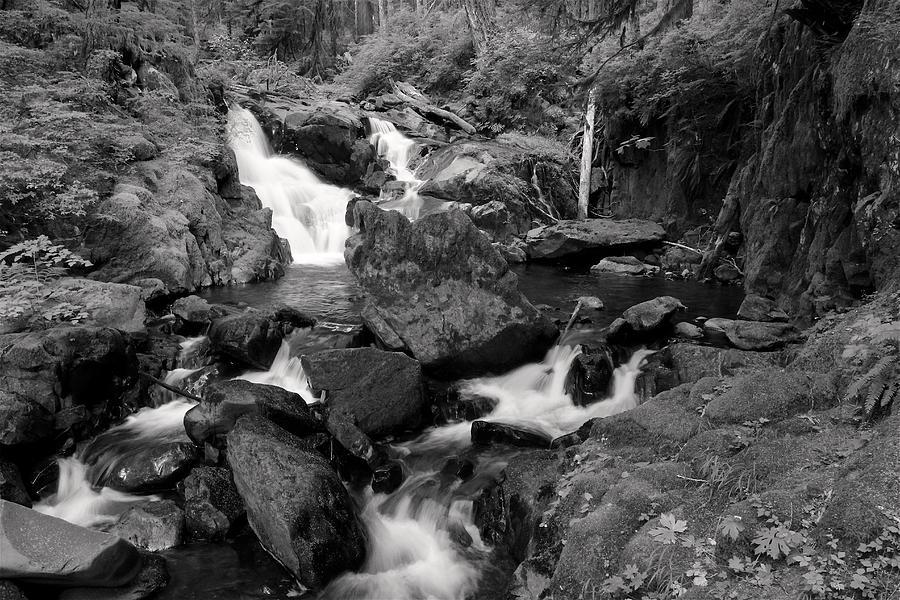 Adventure Photograph - Lovers Lane Loop Four by Nicholas Miller