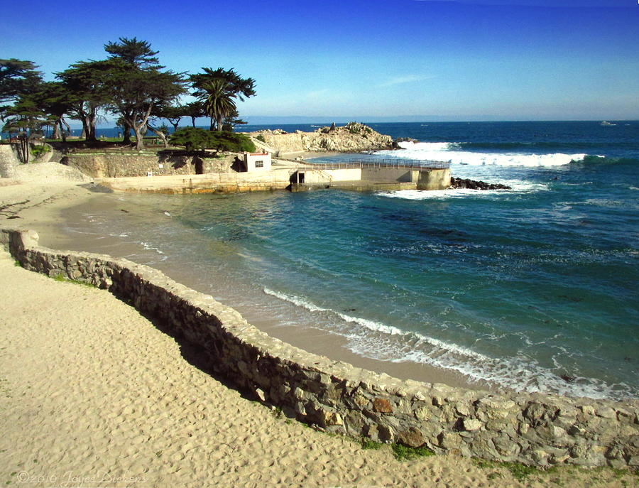 pacific grove chat Mingle2 is the place to meet pacific grove singles there are thousands of men and women looking for love or friendship in pacific grove, california our free online dating site & mobile apps are full of single women and men in pacific grove looking for serious relationships, a little online flirtation, or new friends to go out with start meeting singles in pacific grove.