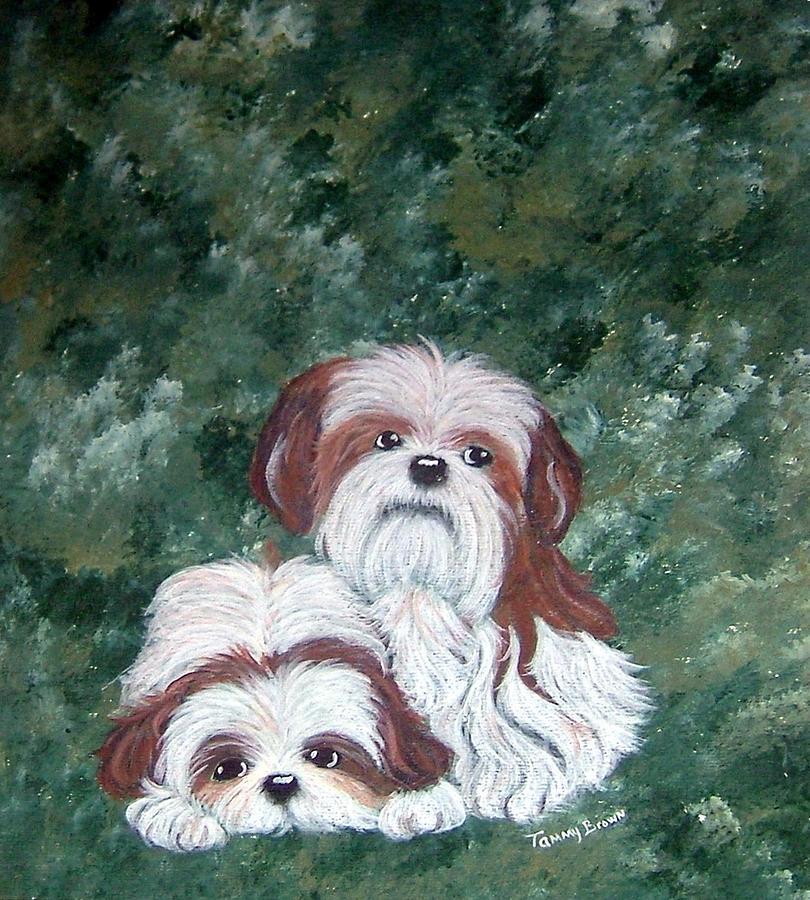 Shih Tzu Painting - Loving Shih Tzu by Tammy Brown