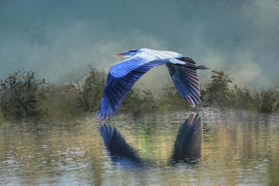 Great Blue Heron Photograph - Low And Slow by Donna Kennedy