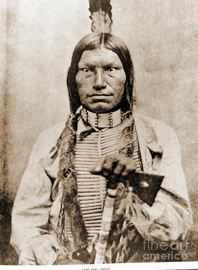 Lakota Photograph - Low Dog Sioux by Gary Wonning