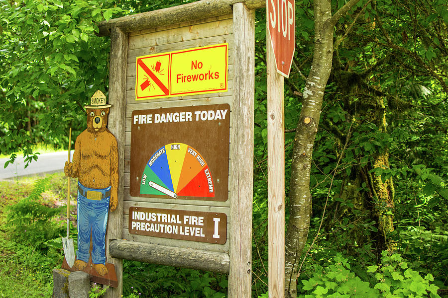 Fire Danger Photograph - Low Fire Danger Today by Tom Cochran