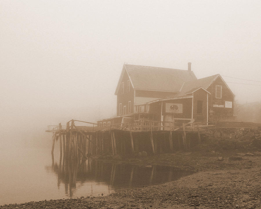 Maine Photograph - Low Tide by Shel Perkins
