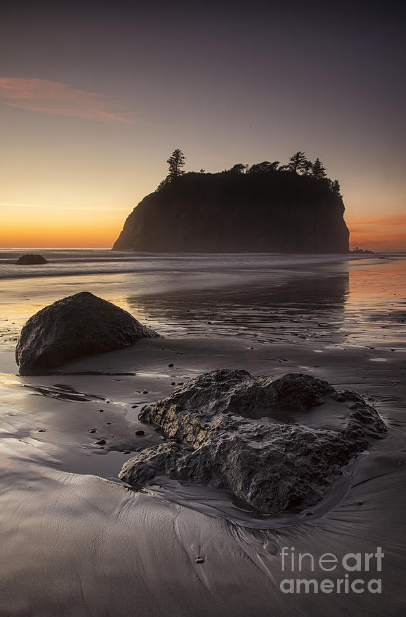 Low Tide by Timothy Johnson