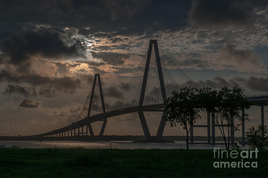 Lowcountry Grace Photograph