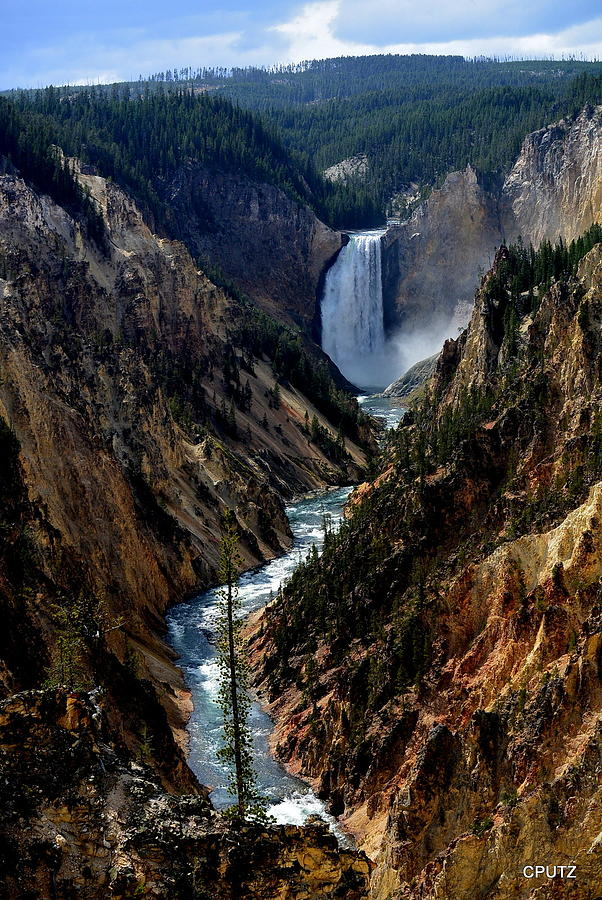 Yellowstone National Park Photograph - Lower Falls by Carrie Putz