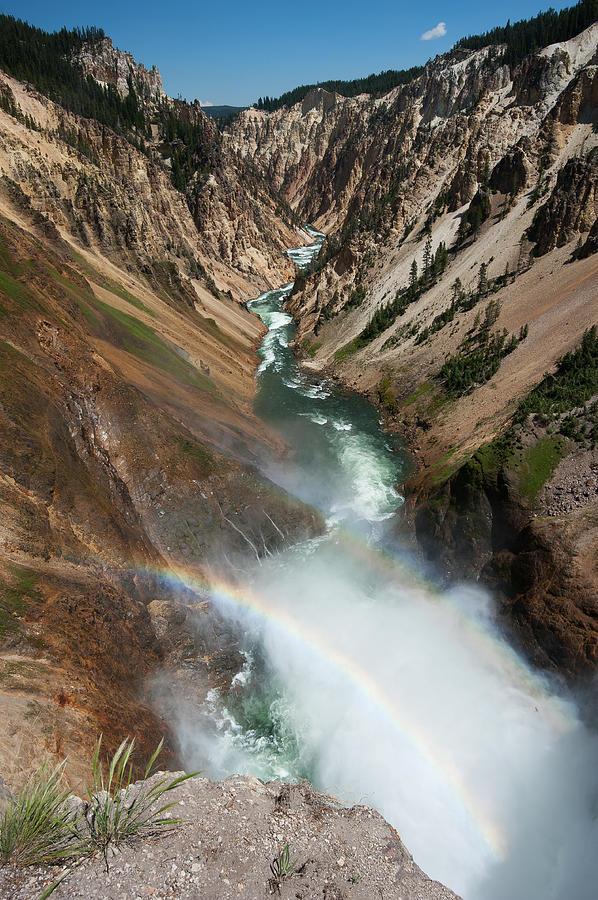 Yellowstone Photograph - Lower Falls Rainbow by Chad Talton