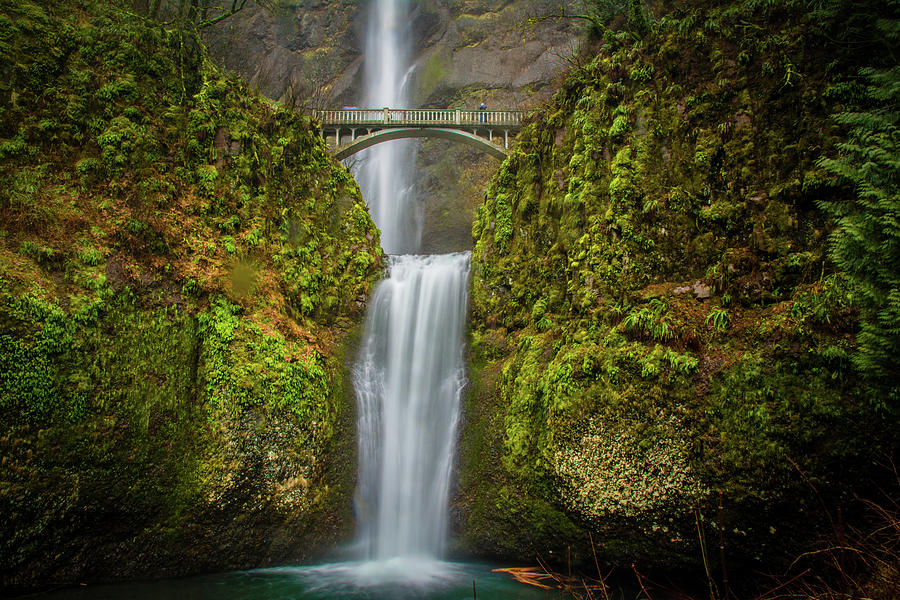 Waterfall Photograph - Lower Multnomah Falls 2 by Jason Brooks