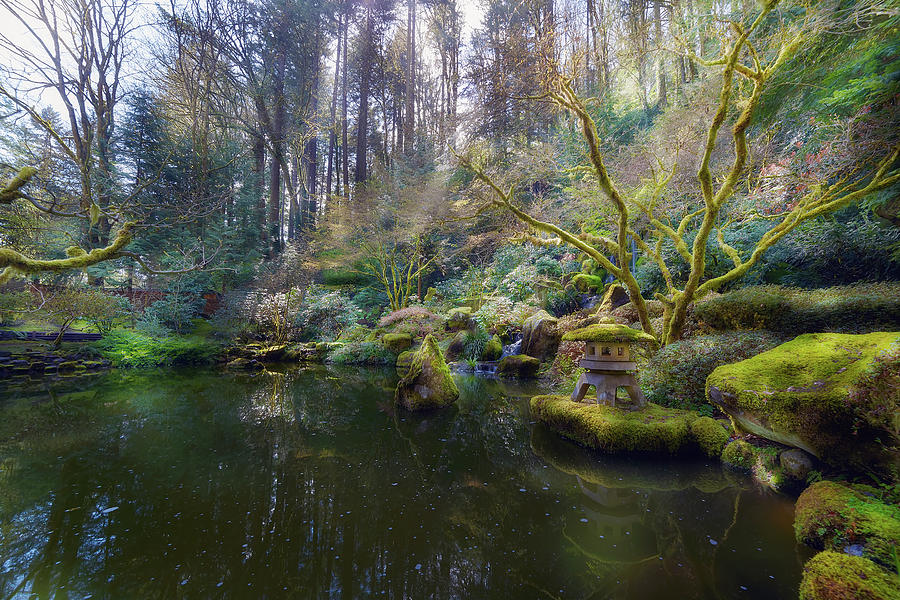 Waterfall Photograph - Lower Pond at Portland Japanese Garden by David Gn