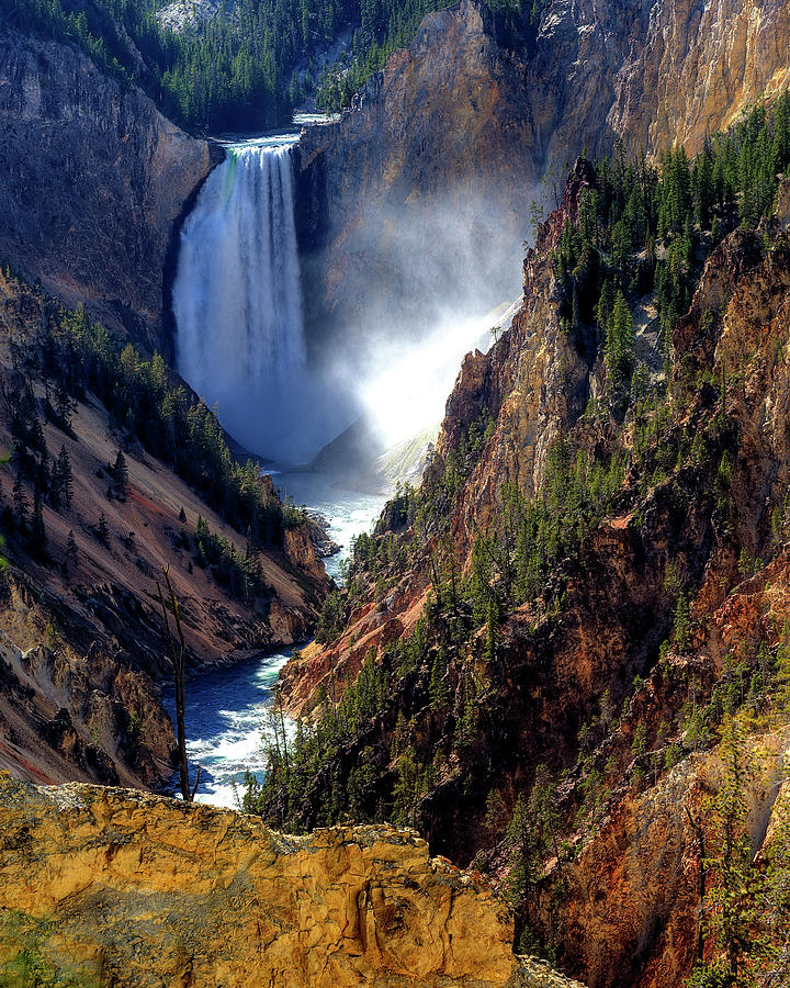 Vertical Photograph - Lower Yellowstone Falls by Alan W Cole