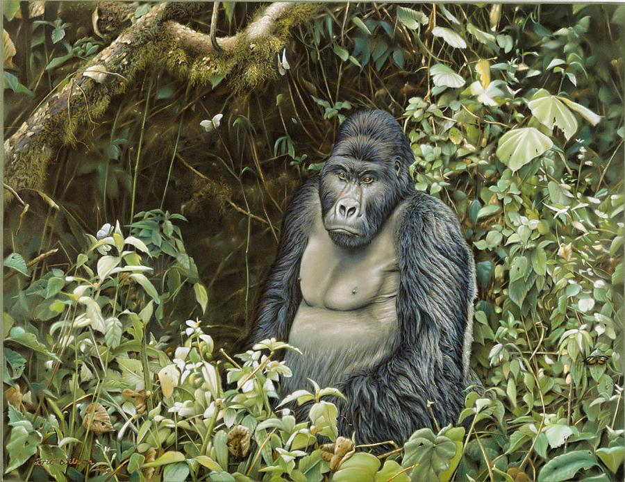 Gorilla Painting - Lowland Gorilla -zaire by Eric Wilson