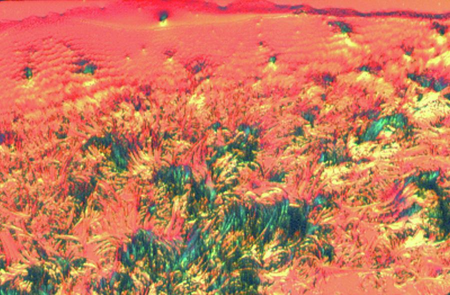 LSD -Hallucinogenic Landscape by Sondra Barrett