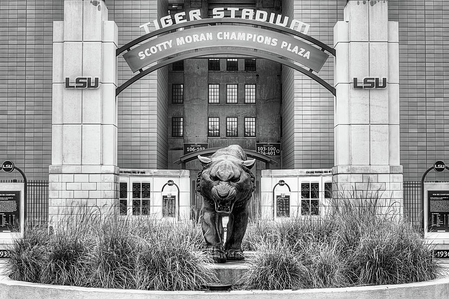 Mike The Tiger Photograph - Lsu Tiger Stadium by JC Findley