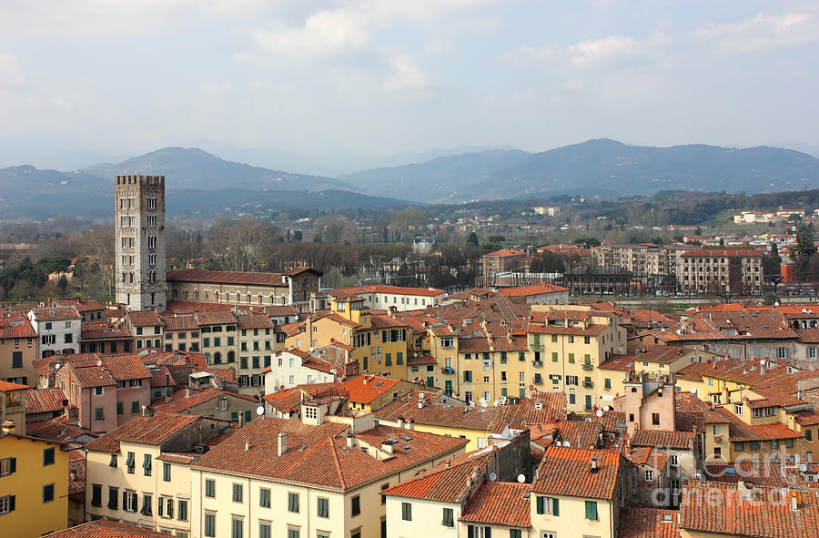 Toscana Photograph - Lucca Aerial Panoramic View With Piazza Dell Anfiteatro by Kiril Stanchev