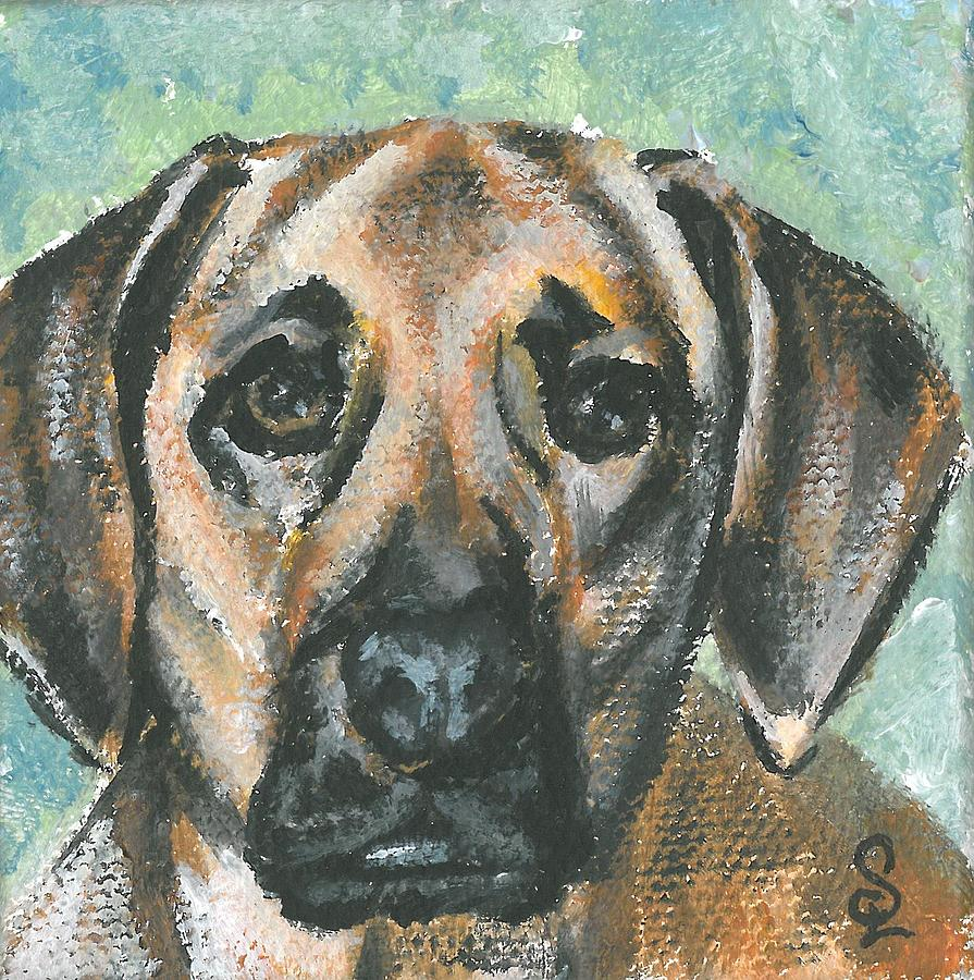 Pet Portraits Painting - Lucia 1 by Sarah Lowe