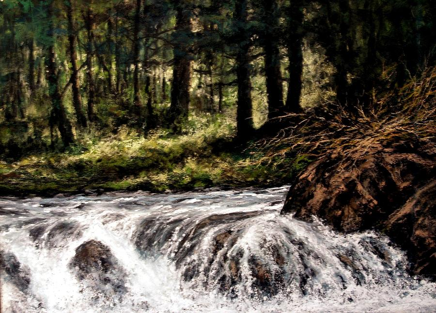 Landscapes Painting - Lucia Falls in July by Jim Gola