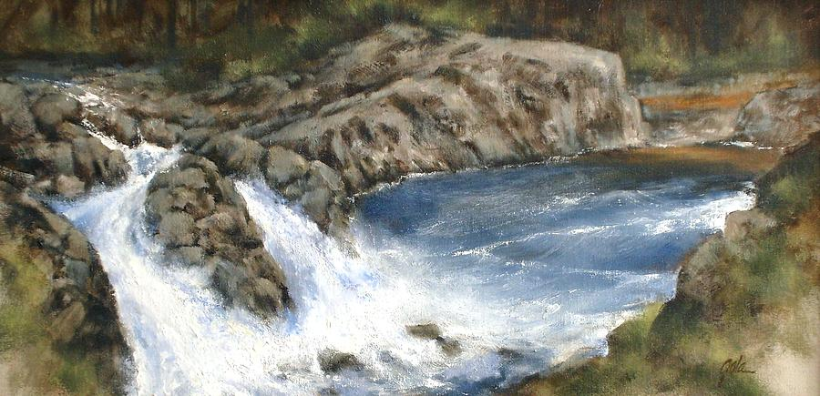 Landscapes Painting - Lucia Falls Summer by Jim Gola