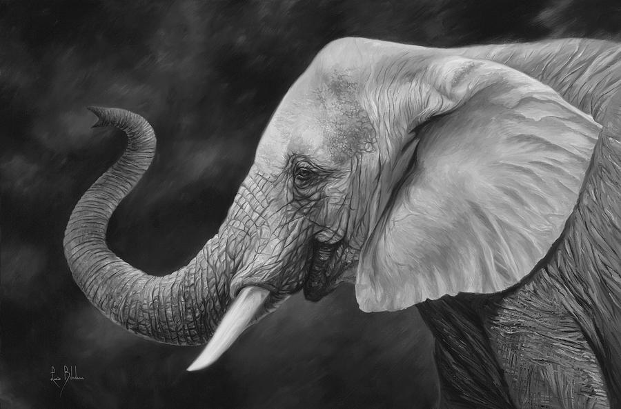 Elephant Painting - Lucky - Black and White by Lucie Bilodeau