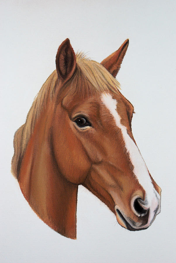 Horse Pastel - Lucky by Lucy Deane