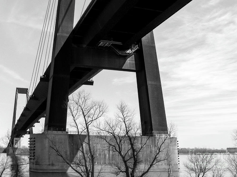 Luling Bridge - Cable Stayed - La Photograph