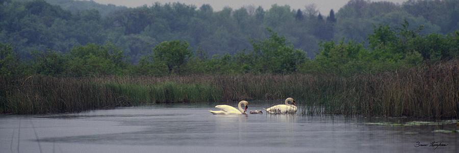 Lake Photograph - Lulu Lake Lovers by Bruce Thompson
