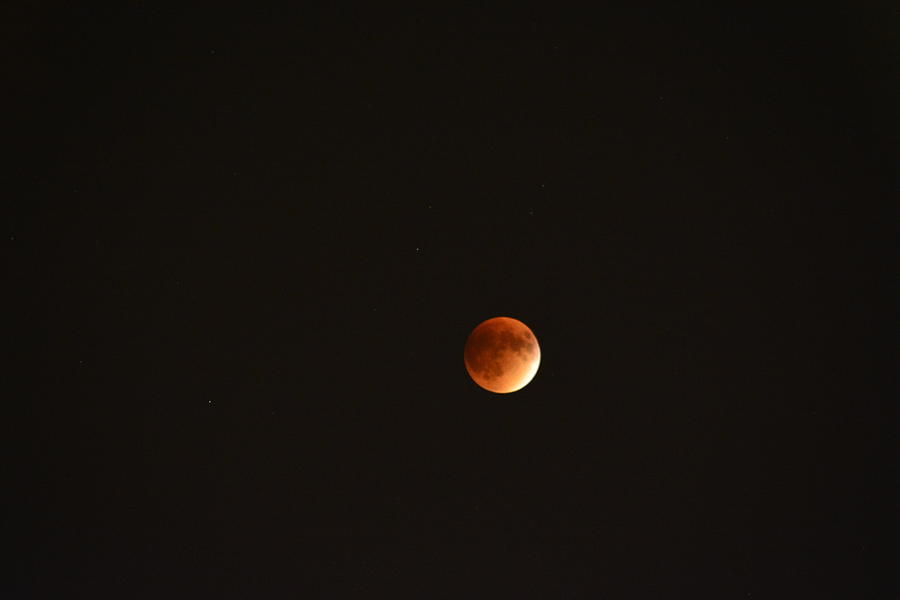Lunar Eclipse Photograph - Lunar Eclipse by Justin Langford