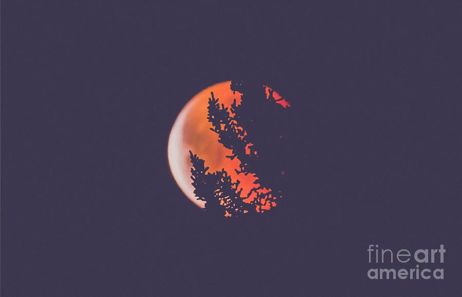 Lunar Eclispe 2018  by Peggy Franz