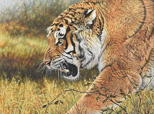 Tiger Painting - Lunchtime - Tiger by Alan M Hunt