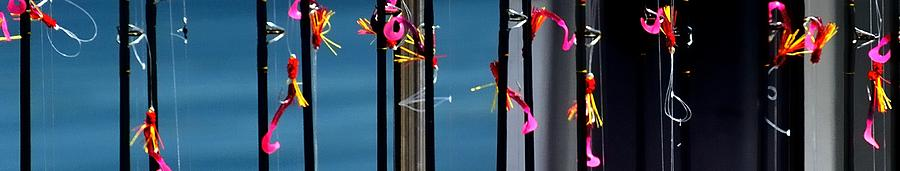 Lures 2328 P Photograph