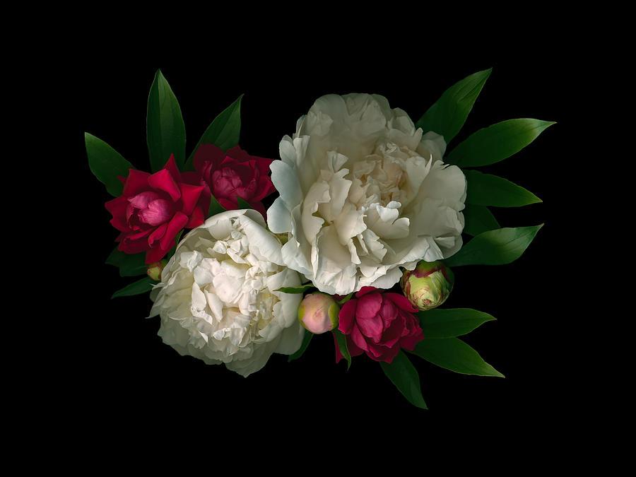 Luscious Peonies Horizontal by Deborah J Humphries