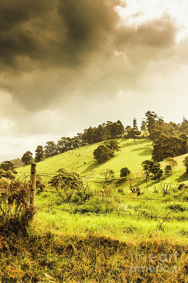 Lush Green Country Farmland Photograph