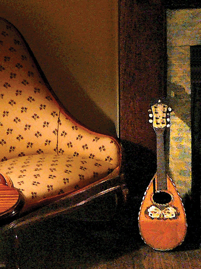 Lute Photograph - Lute by Susan Savad