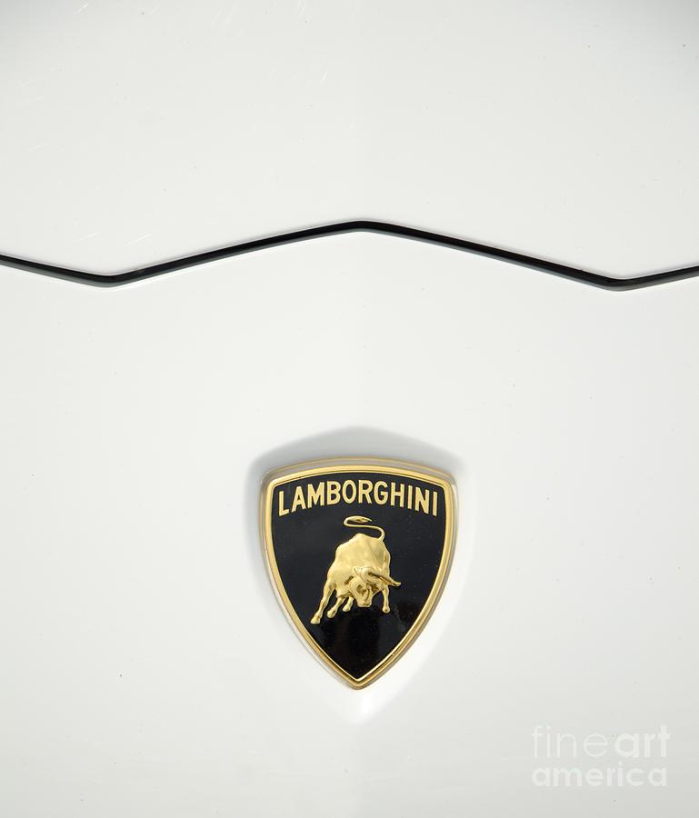 Lamborghini Photograph - Luxury In Marbella by Perry Van Munster