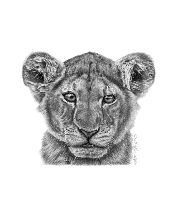 Lyla the lion cub by Abbey Noelle