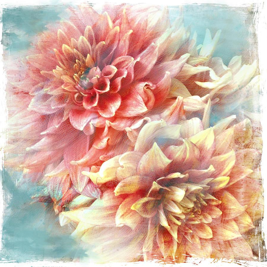 Lynia Dahlia by Jill Love
